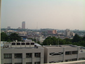 大学から見た県庁。高いビルが県庁です。