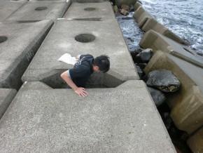 隙間に入って、貝を捕獲!